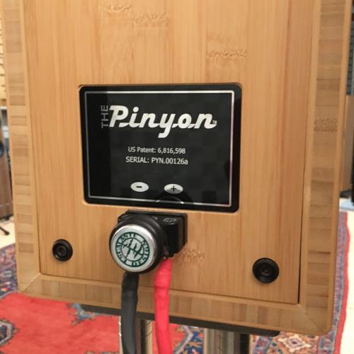 Escalante Pinyon